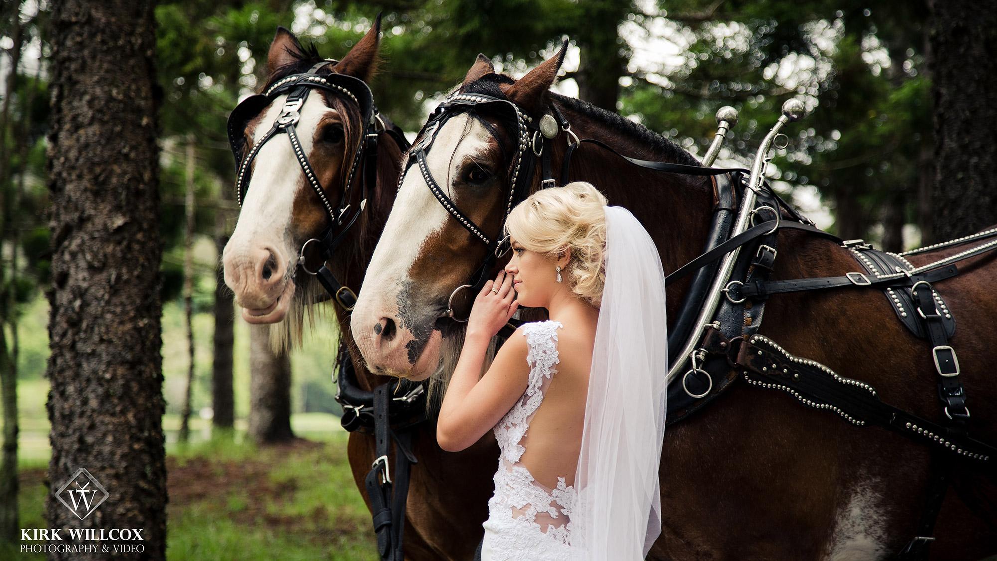 bride portrait gold coast