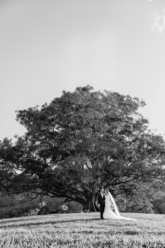 wedding landscape photography